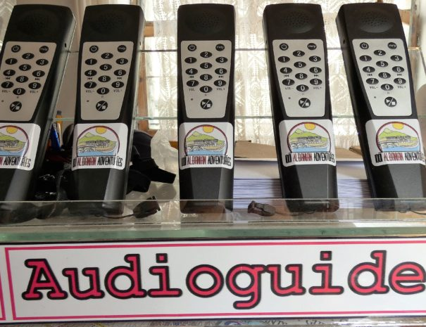 audiog